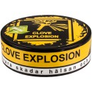 Gn Organic Clove Explosion Brown Portion Snus